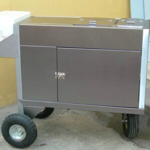 carro-modelo-mini